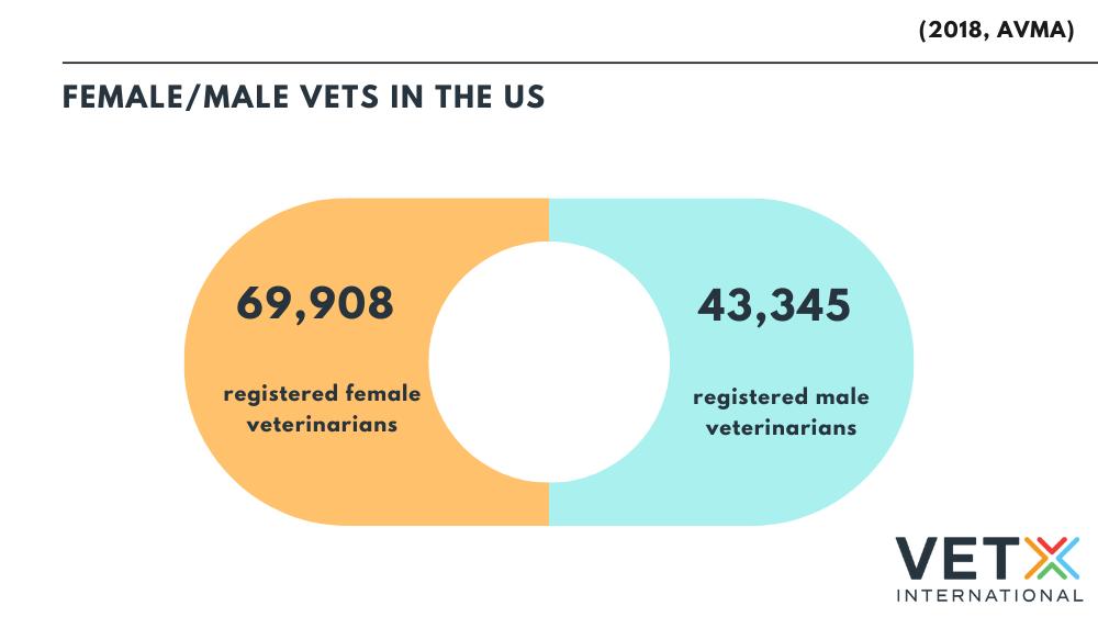 male vs female veterinarians